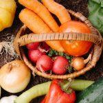 冷え性に効く体を温める陽性の食べ物!効果的な食べ方で代謝UP!